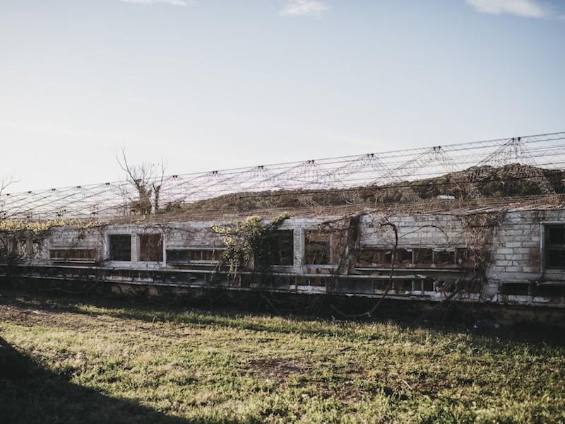 ¿Sabías que el Autódromo fue una explotación avícola durante más de 20 años? 1